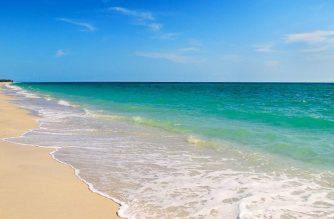 cheap flights to florida