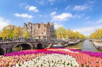 cheap flights to amsterdam in the spring