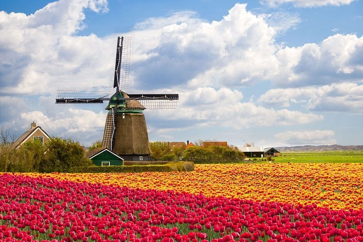 cheap flights to -amsterdam-the-netherlands 3